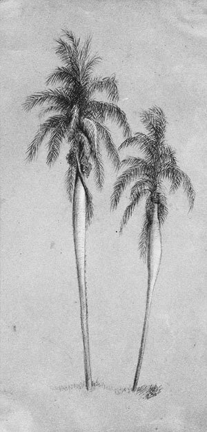 Elihu Vedder - Two Palm Trees