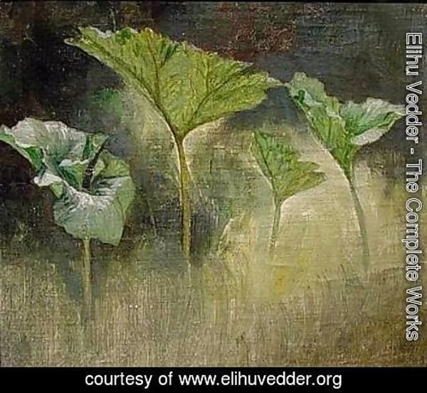 Elihu Vedder - Study of Leaves, Glen Falls, NY